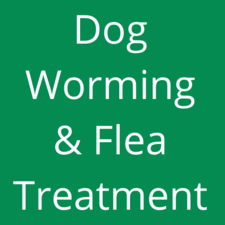 Worming & Flea Treatment
