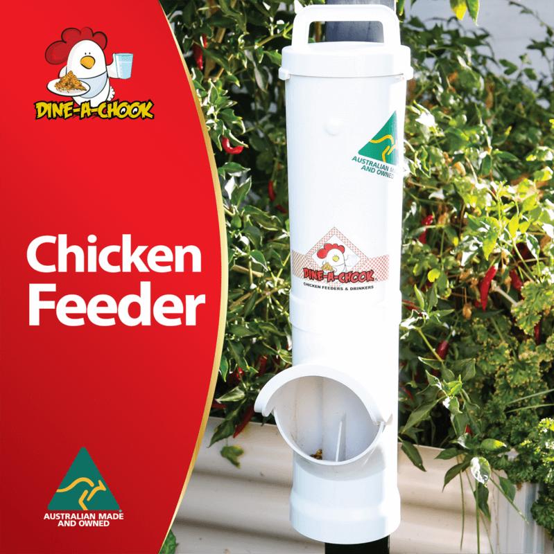 Dine a Chook  35L Chicken feeder
