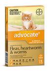Advocate Cat & kitten - up to 4kg (orange) 6's