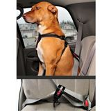 Ezy Dog Car Restraint  Black