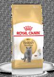 Royal Canin Feline British Shorthair 4kg